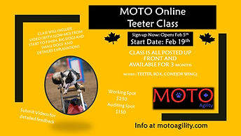Online-Teeter-Poster-2021.jpg