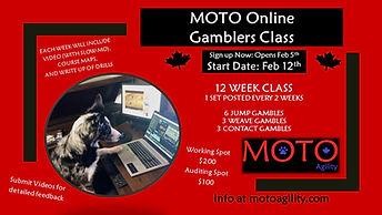 Online Gamblers Poster 2021.jpg