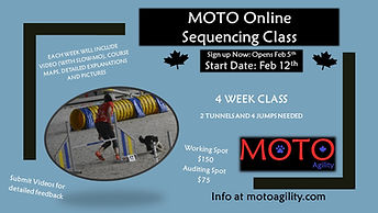 Online-Sequencing-Poster-2021.jpg