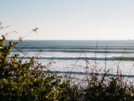 Solid Surf for Everyone this March