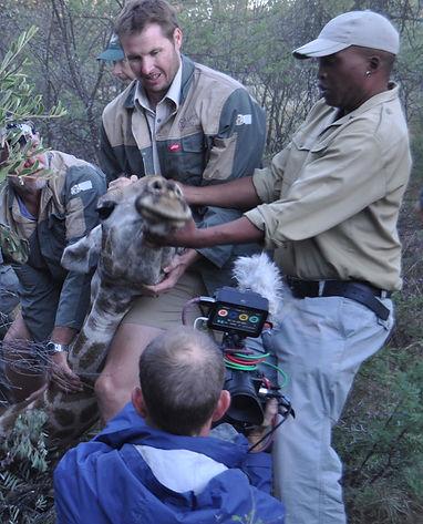 Francois-with-giraffe-in-field.JPG