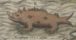 Sea-Swine-56.jpg
