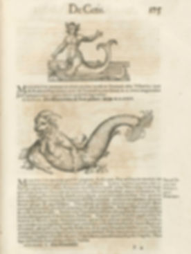 Historiae animalium 1 Seres do mar.jpg