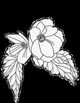 garden flower outline.png
