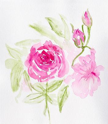 whimsical rose (lightroom).jpg