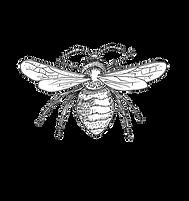 Honeybee copy.png