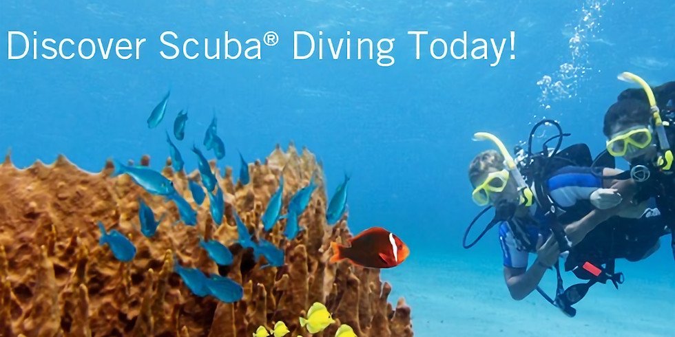 Discover Scuba Diving (Cutler Bay Residents and Students)