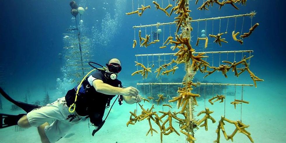Coralpalooza Dive and Dinner