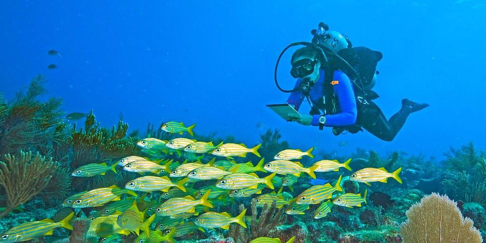 Volunteer Fish Survey Project Class