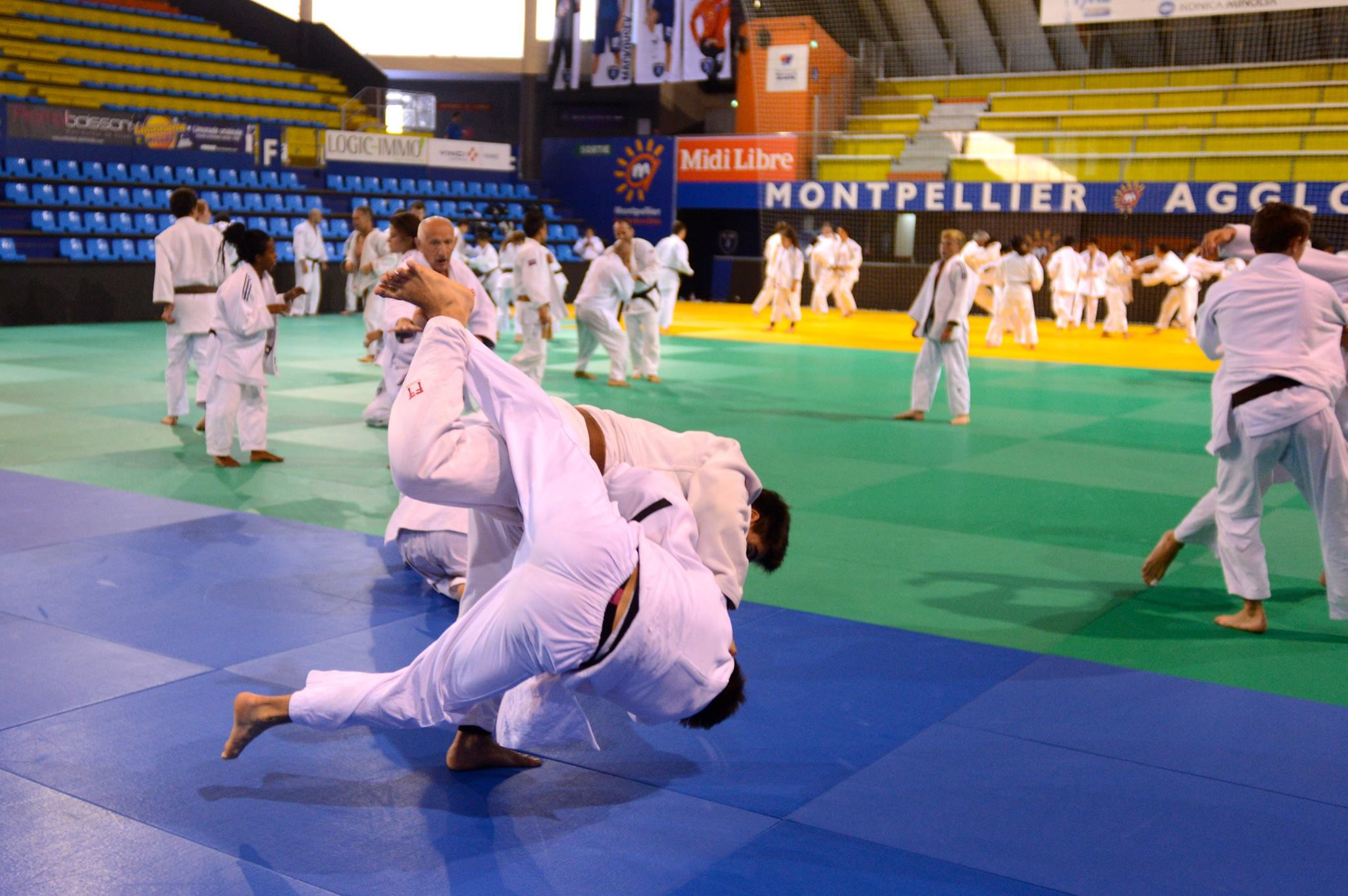 Stage de Montpellier