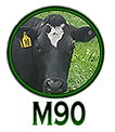 Cow M90