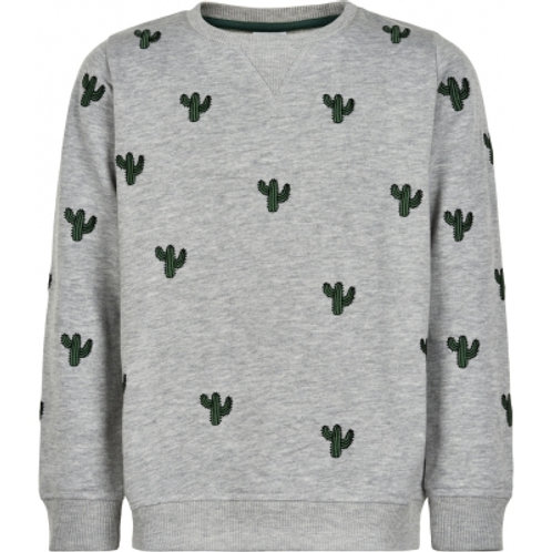 The New Sweater Cactus