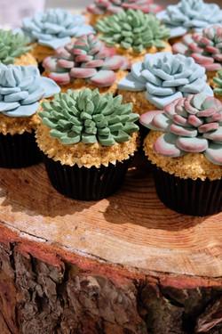 Succulent Cupcakes 9
