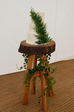 Rustic White Buttercream Cake Decorated with Green Foliage on Log Cake Stand