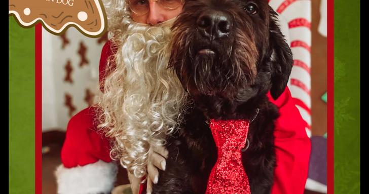 Santa Paws Commemorative Image Compilation