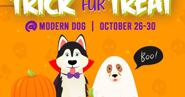 Modern Dog Halloween 2020