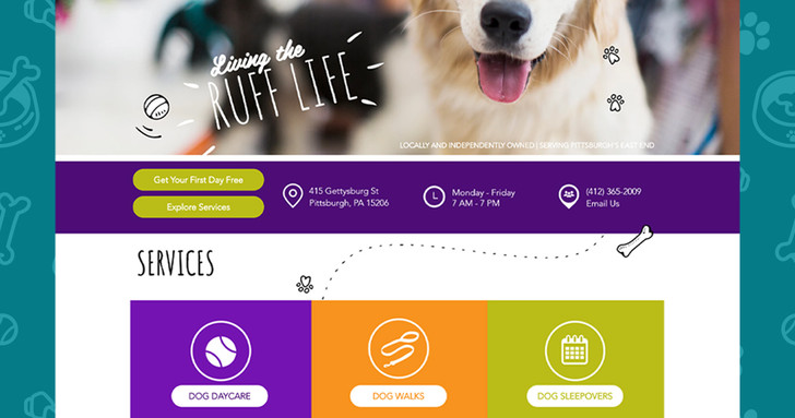 Modern Dog New Site Front Page