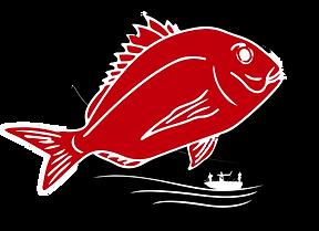 Kingston Offshore Fishing Competition Kingston SE