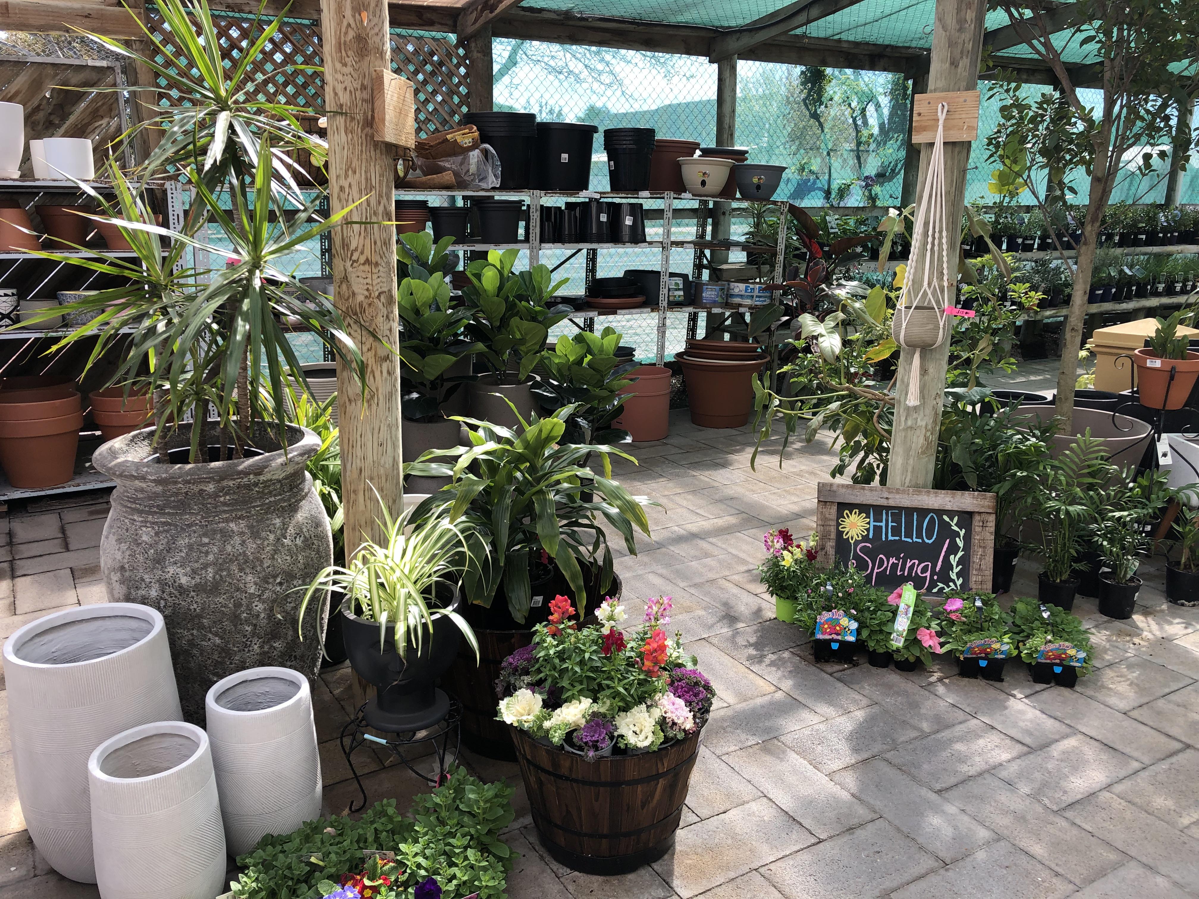 Garden Centre at Popes