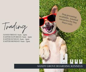 Sandy Grove Boarding Kennels