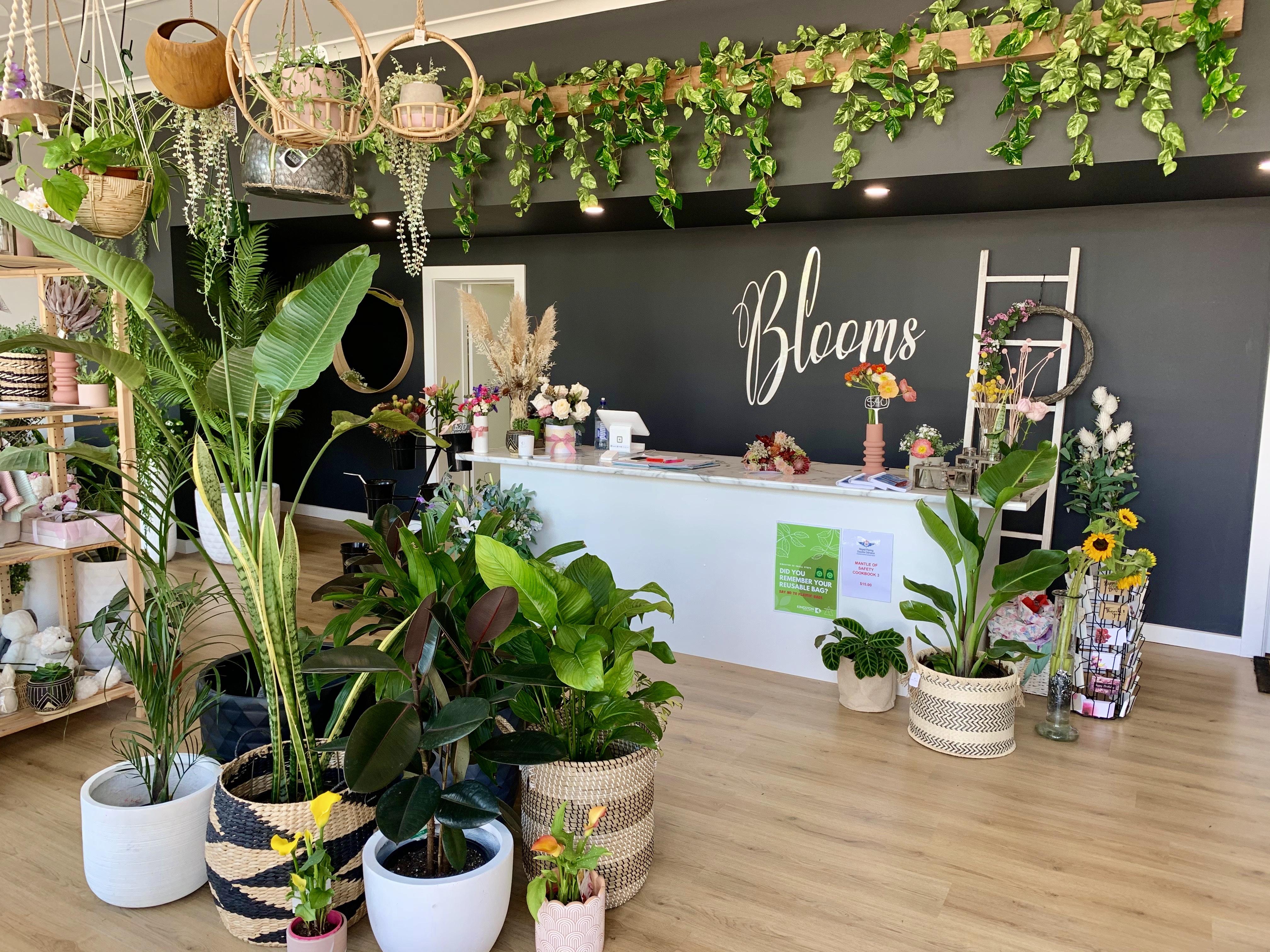 Blooms of Kingston_1