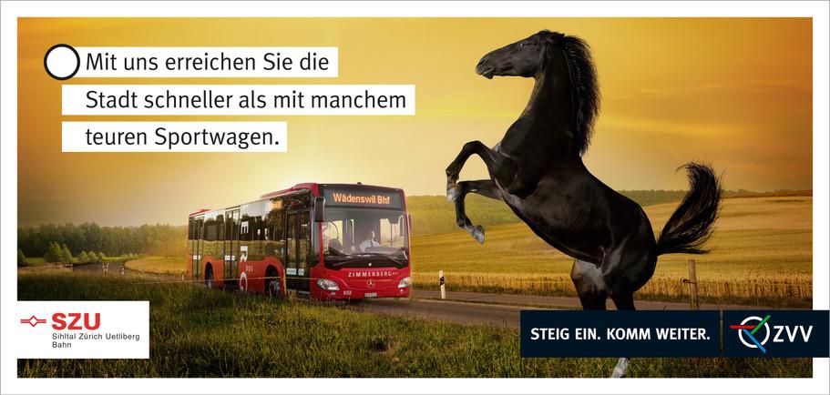 ZVV_Zimmerergbus F12.jpg