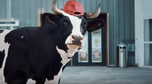 Swiss Milk, tv commercial