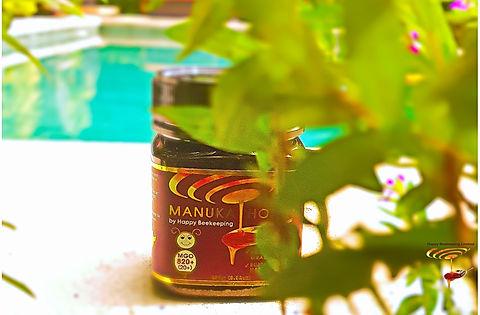 Manuka%20Honey820%2B_edited.jpg