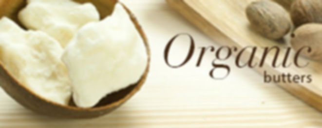 Serenity Pure Shea Butter in a cup and Shea Fruits