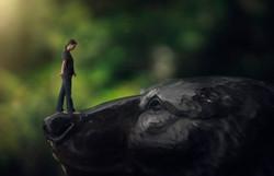 Bear Littlefolk_Final