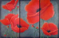 """""""Poppy Triptych"""""""