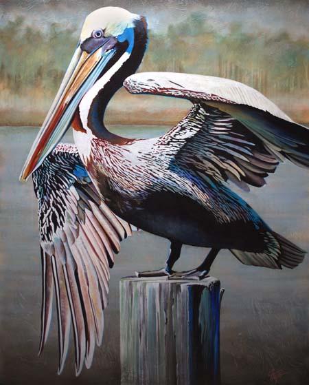 """""""Pelican"""""""