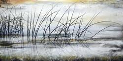 """Reeds On A Misty Morning"""