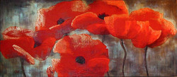 Red Poppy Series 8