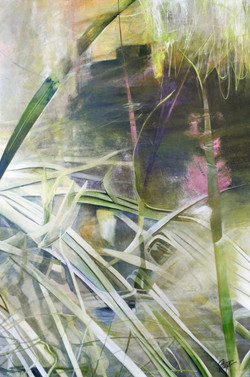 The Abstract Nature of Reeds 6