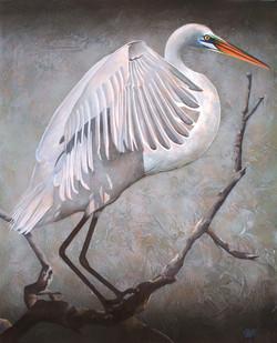 """""""Dans Egret"""""""