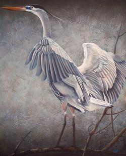 """Dans Heron"""