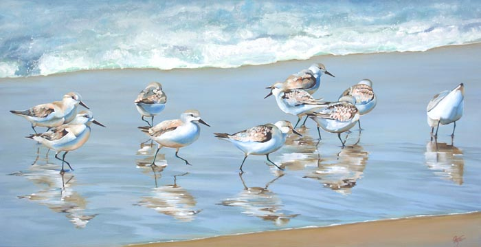 """Sandpipers"""
