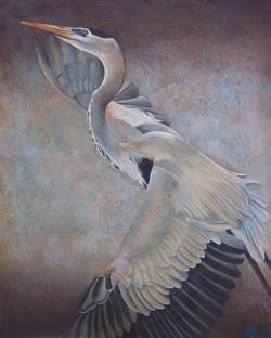 """Soaring Heron"""