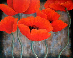 """Red Poppy Series 16"""