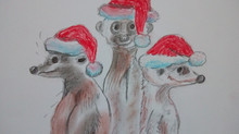 Christmas Meerkats!