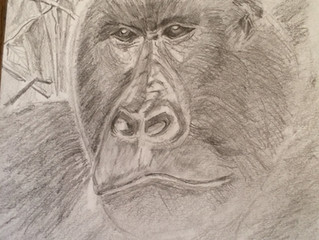 A lovely drawing by Pam Jobling...