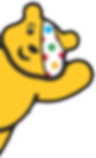 pudsy website.png