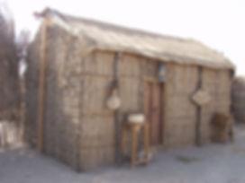 fig.1 palm room.jpg