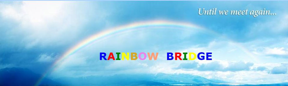 RAINBOW BRIDGE CAPTURE.JPG