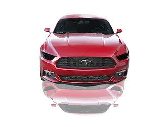 Front_Full_Mustang.jpg