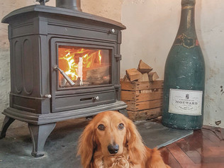 Dog friendly, cosy cafe with woodburner.