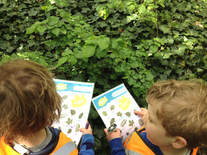 Developing our observation skills