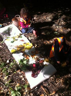 Exploring colour through nature