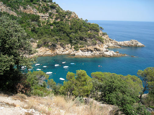 Mediterranean coast with boats